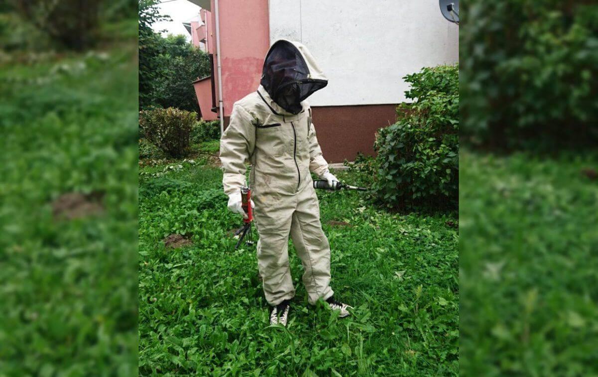 Usuwanie agresywnych owadów